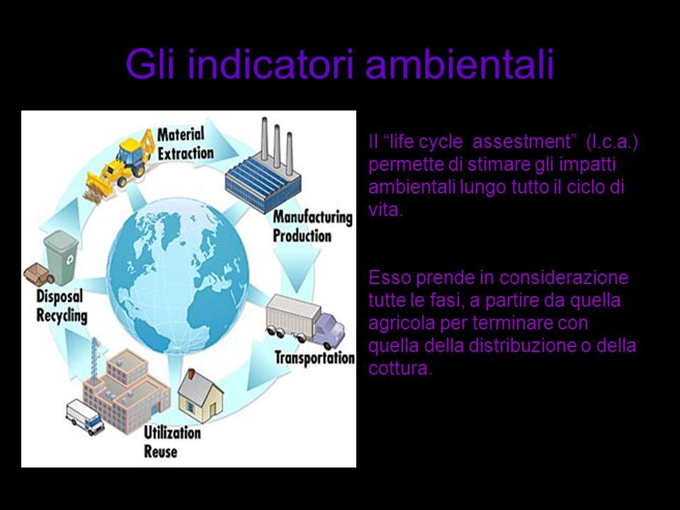 Gli indicatori ambientali