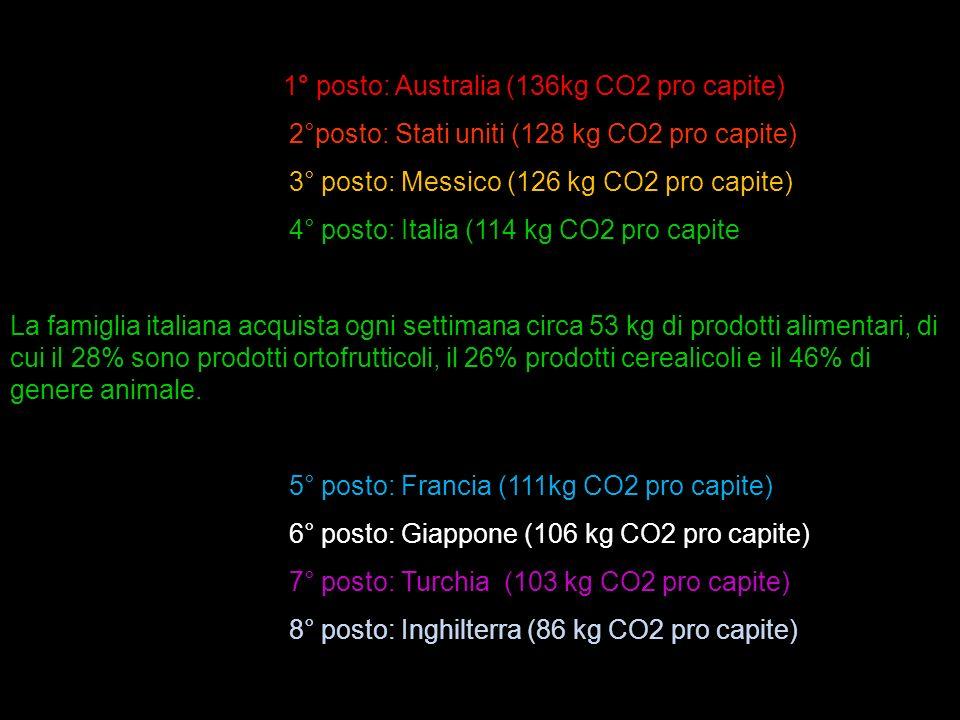 2°posto: Stati uniti (128 kg CO2 pro capite)