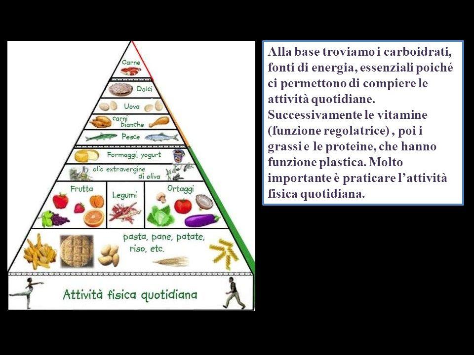 Alla base troviamo i carboidrati, fonti di energia, essenziali poiché ci permettono di compiere le attività quotidiane.