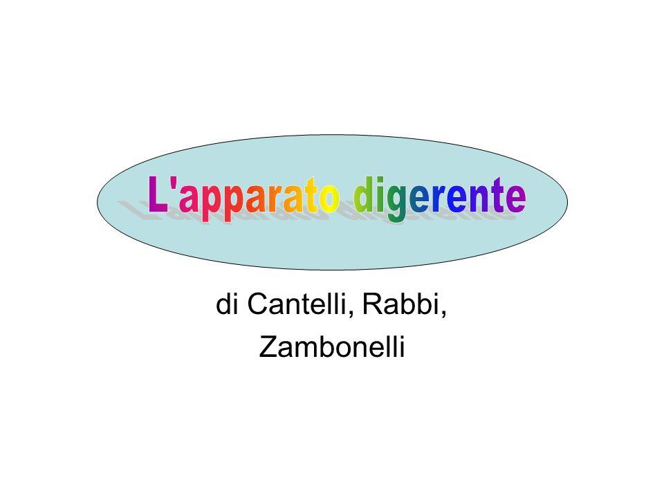 di Cantelli, Rabbi, Zambonelli