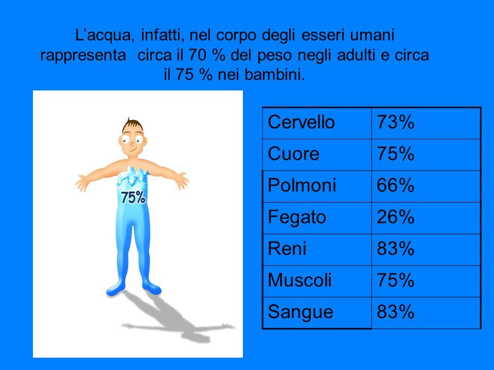 Cervello 73% Cuore 75% Polmoni 66% Fegato 26% Reni 83% Muscoli Sangue