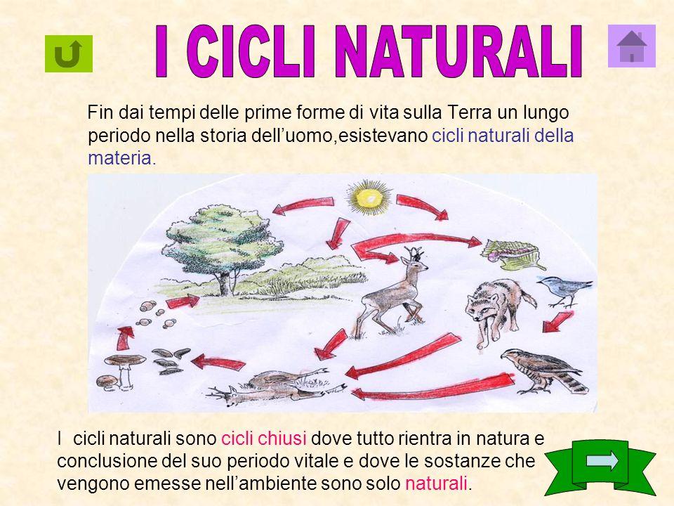 I CICLI NATURALI Fin dai tempi delle prime forme di vita sulla Terra un lungo periodo nella storia dell'uomo,esistevano cicli naturali della materia.