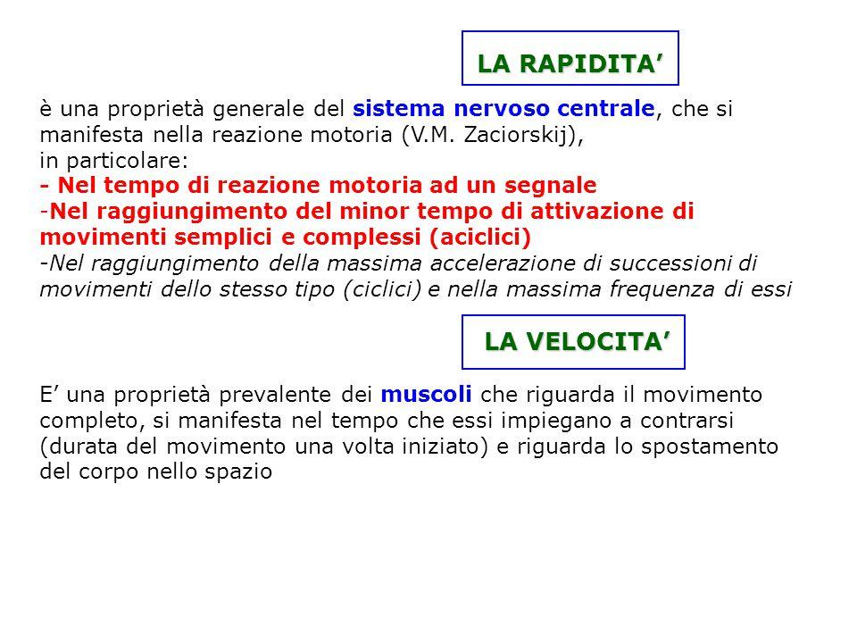 LA RAPIDITA' è una proprietà generale del sistema nervoso centrale, che si manifesta nella reazione motoria (V.M. Zaciorskij),