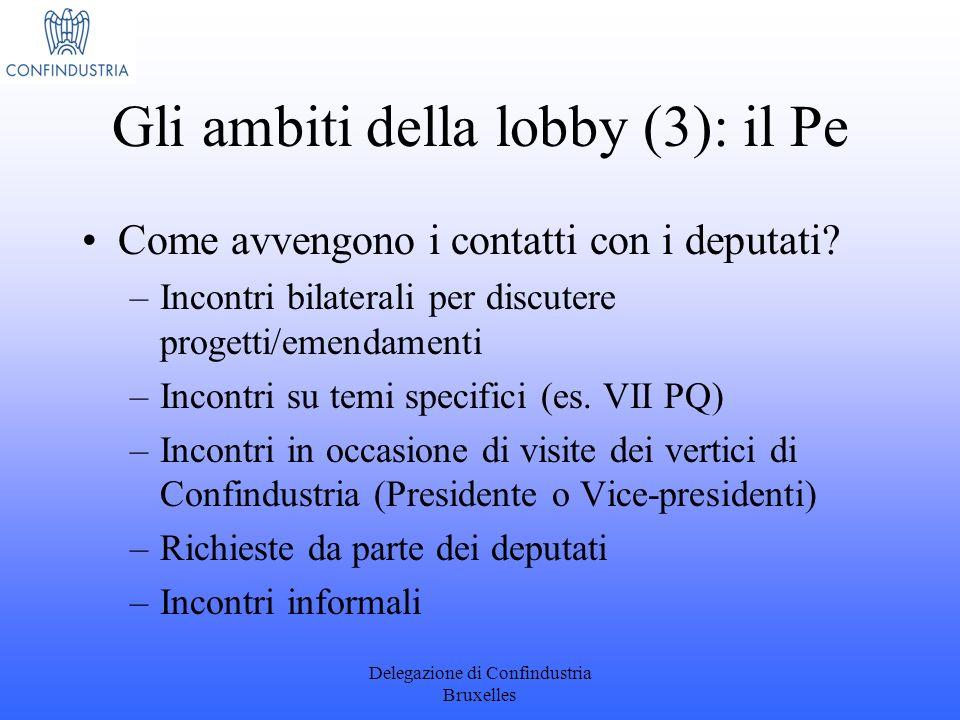 Gli ambiti della lobby (3): il Pe