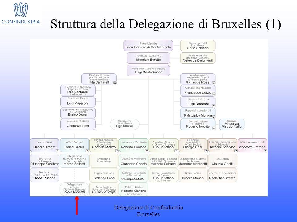 Struttura della Delegazione di Bruxelles (1)