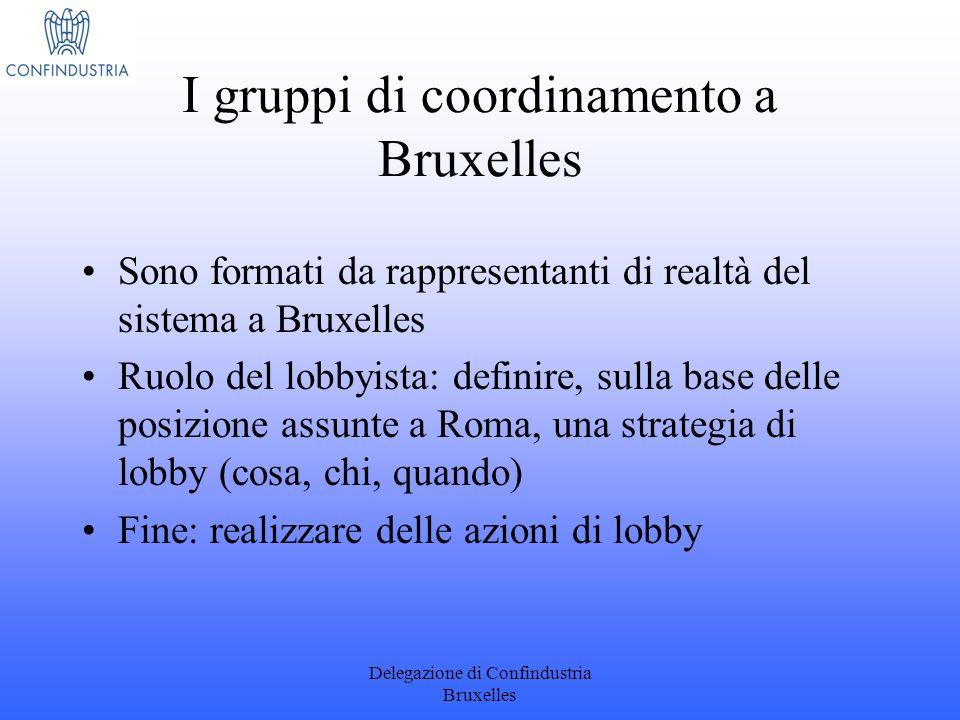 I gruppi di coordinamento a Bruxelles