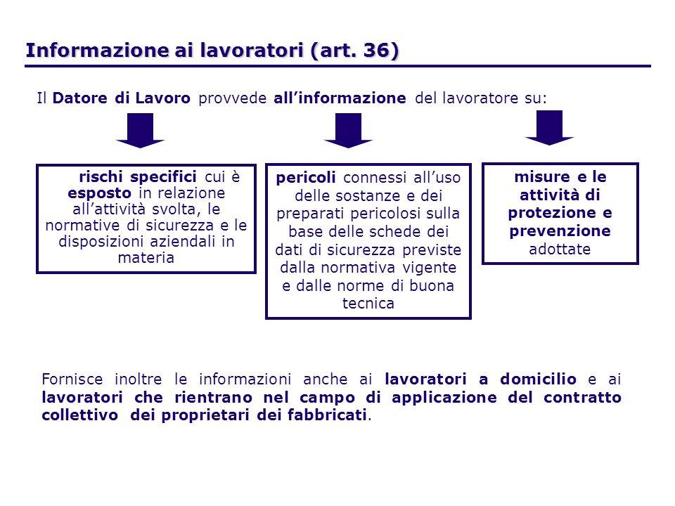 Informazione ai lavoratori (art. 36)