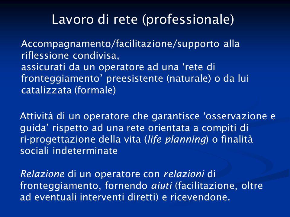 Lavoro di rete (professionale)