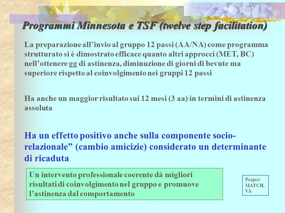Programmi Minnesota e TSF (twelve step facilitation)