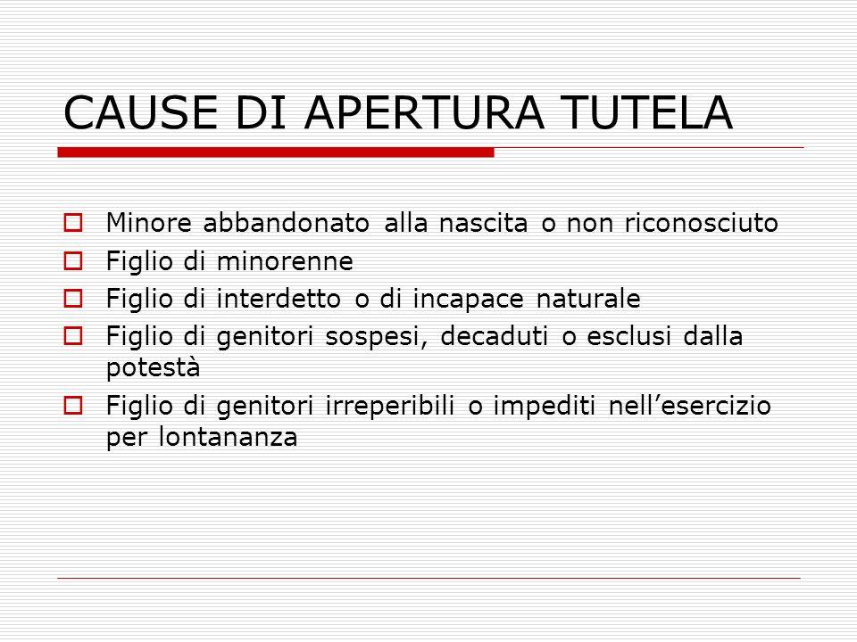 CAUSE DI APERTURA TUTELA