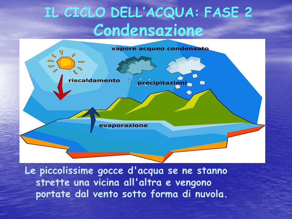 IL CICLO DELL'ACQUA: FASE 2 Condensazione