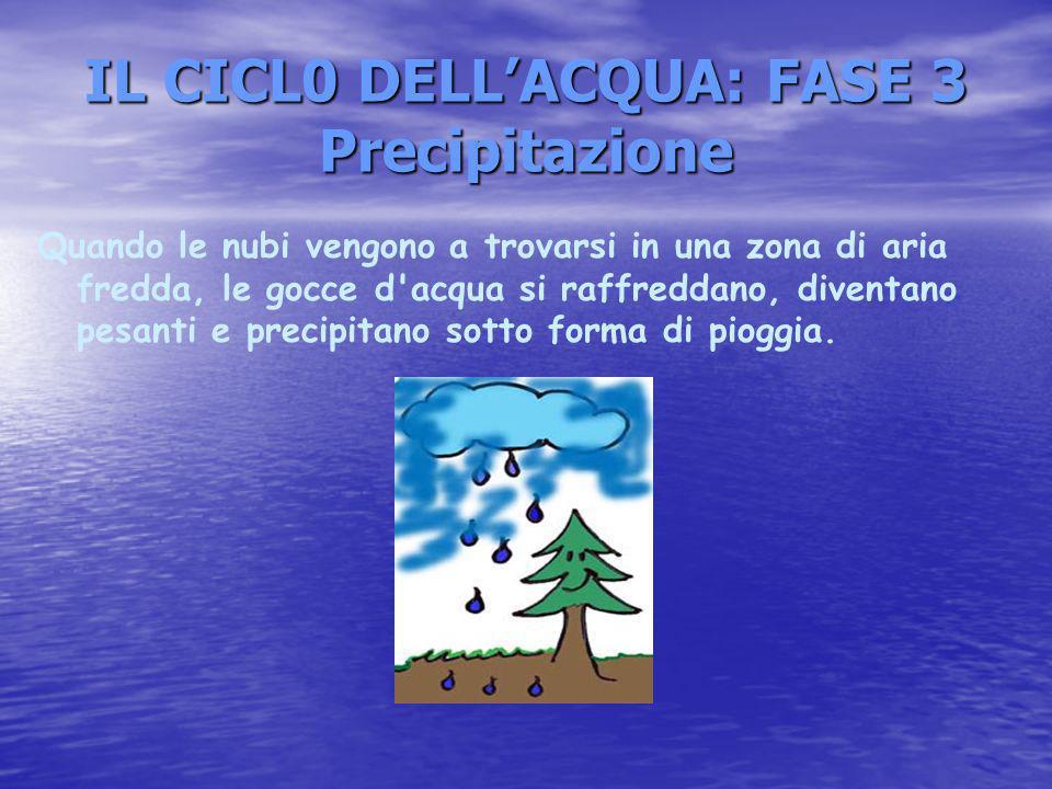 IL CICL0 DELL'ACQUA: FASE 3 Precipitazione