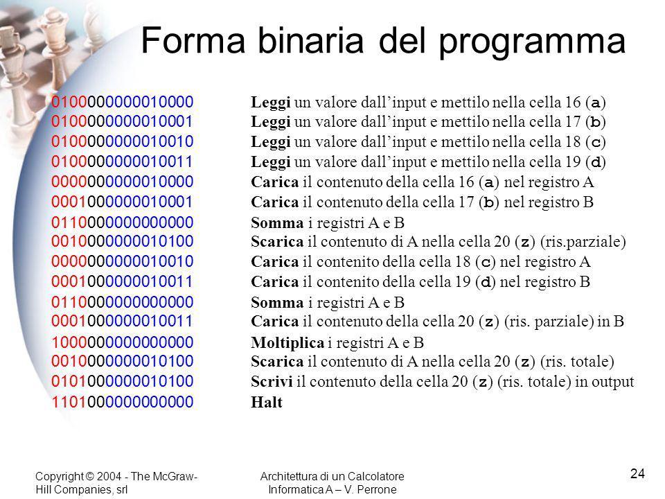 Forma binaria del programma