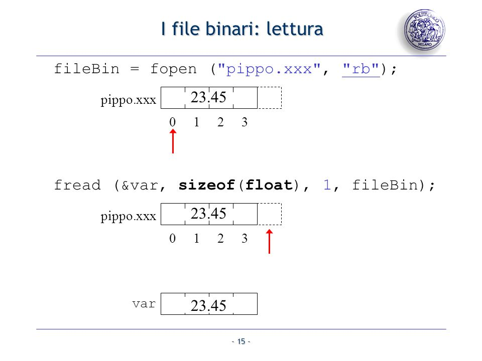 I file binari: lettura fileBin = fopen ( pippo.xxx , rb ); 23.45