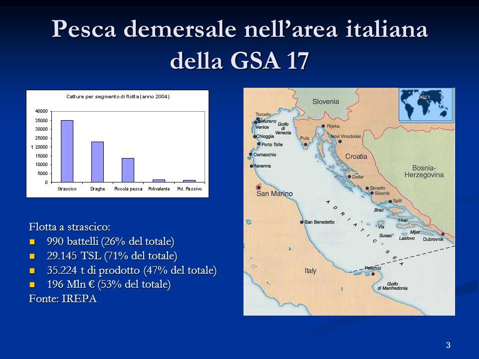 Pesca demersale nell'area italiana della GSA 17