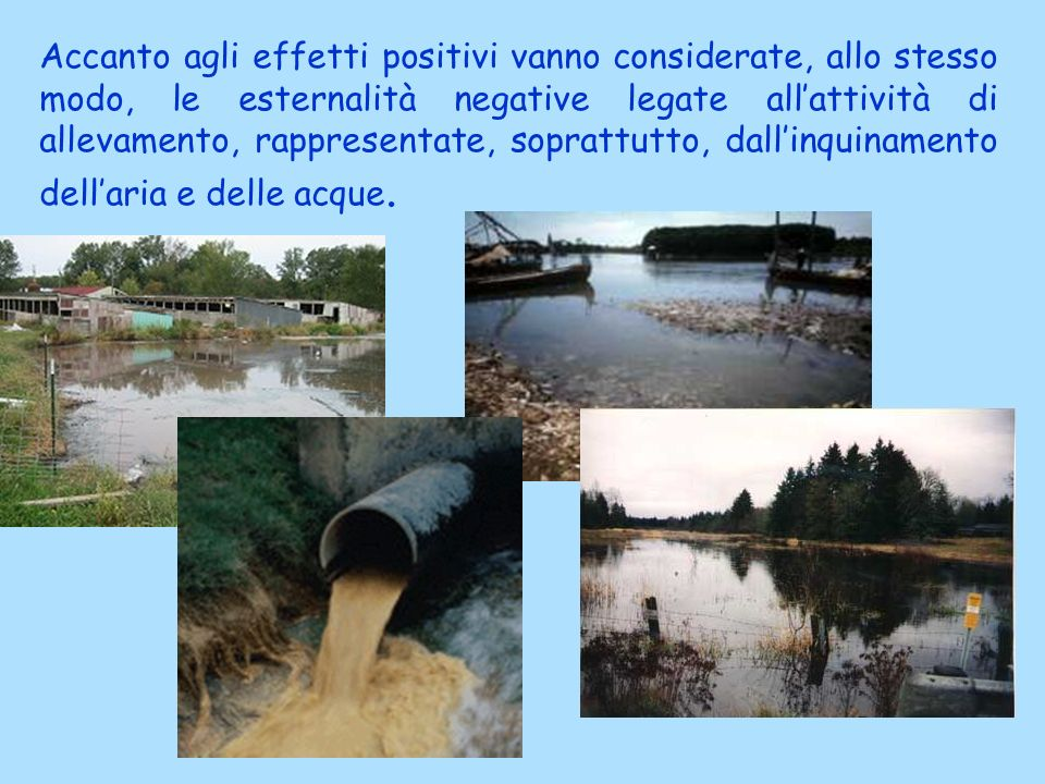 Accanto agli effetti positivi vanno considerate, allo stesso modo, le esternalità negative legate all'attività di allevamento, rappresentate, soprattutto, dall'inquinamento dell'aria e delle acque.
