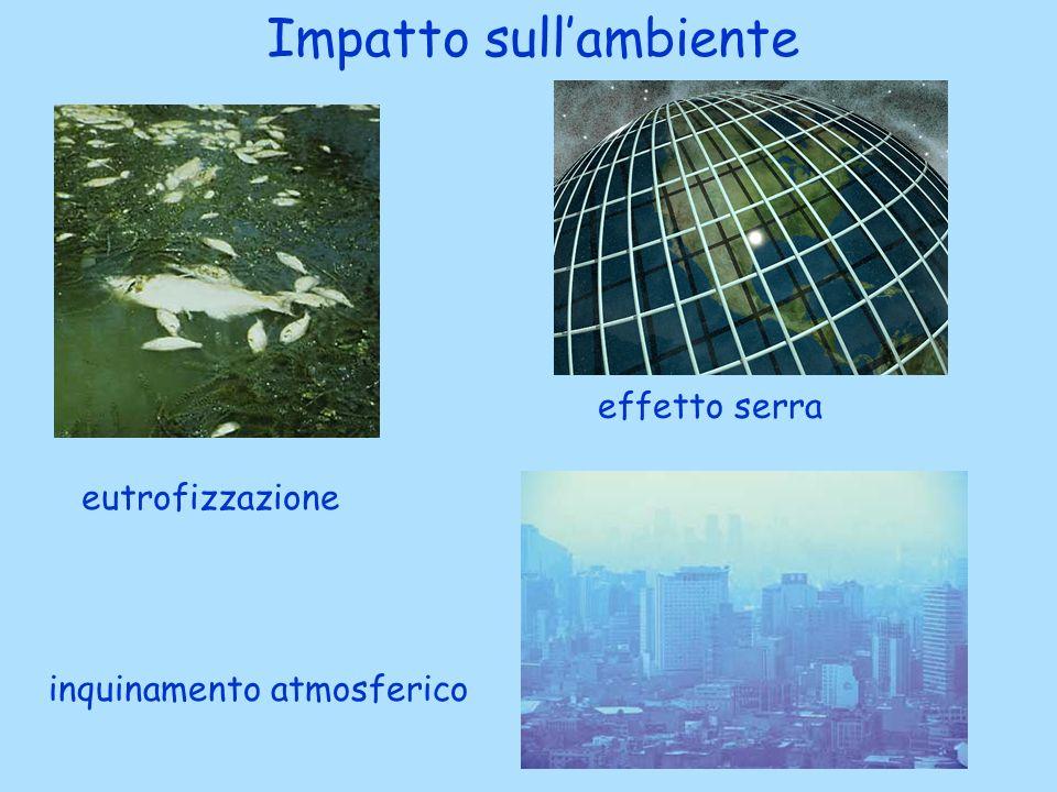 Impatto sull'ambiente