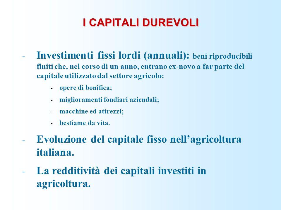 Evoluzione del capitale fisso nell'agricoltura italiana.