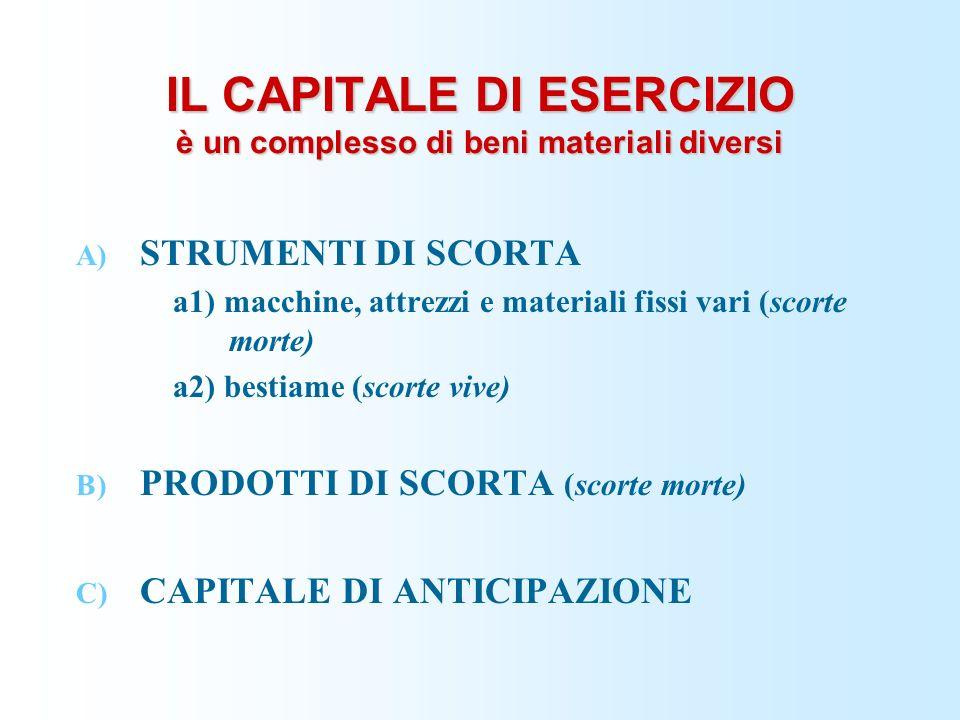 IL CAPITALE DI ESERCIZIO è un complesso di beni materiali diversi