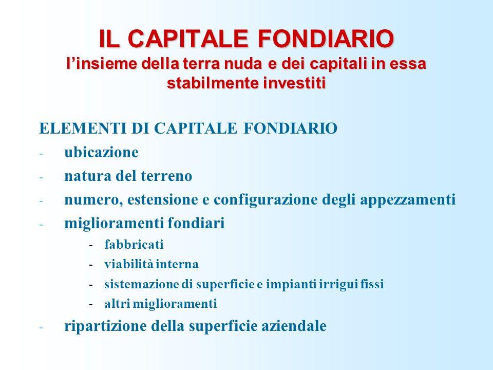 IL CAPITALE FONDIARIO l'insieme della terra nuda e dei capitali in essa stabilmente investiti