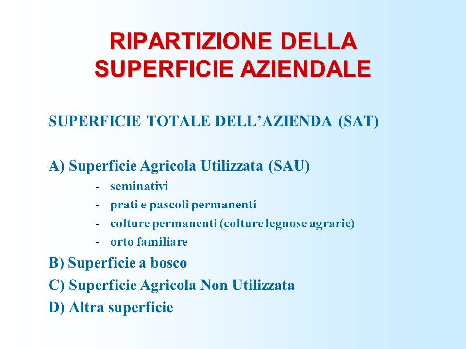 RIPARTIZIONE DELLA SUPERFICIE AZIENDALE