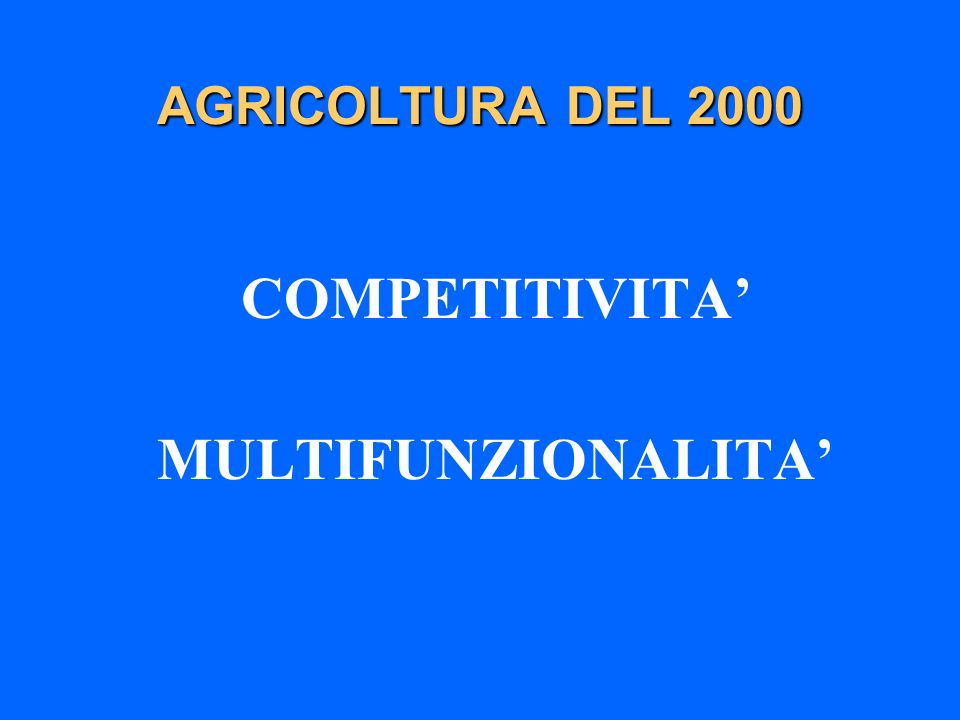 COMPETITIVITA' MULTIFUNZIONALITA'