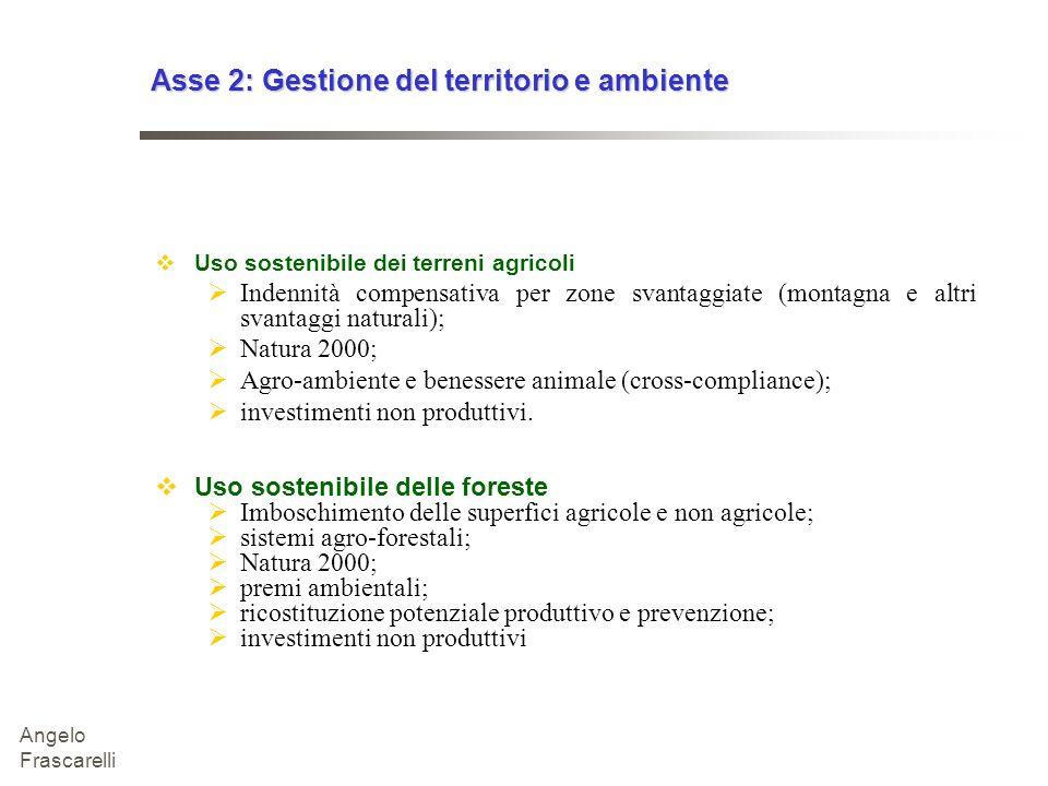Asse 2: Gestione del territorio e ambiente