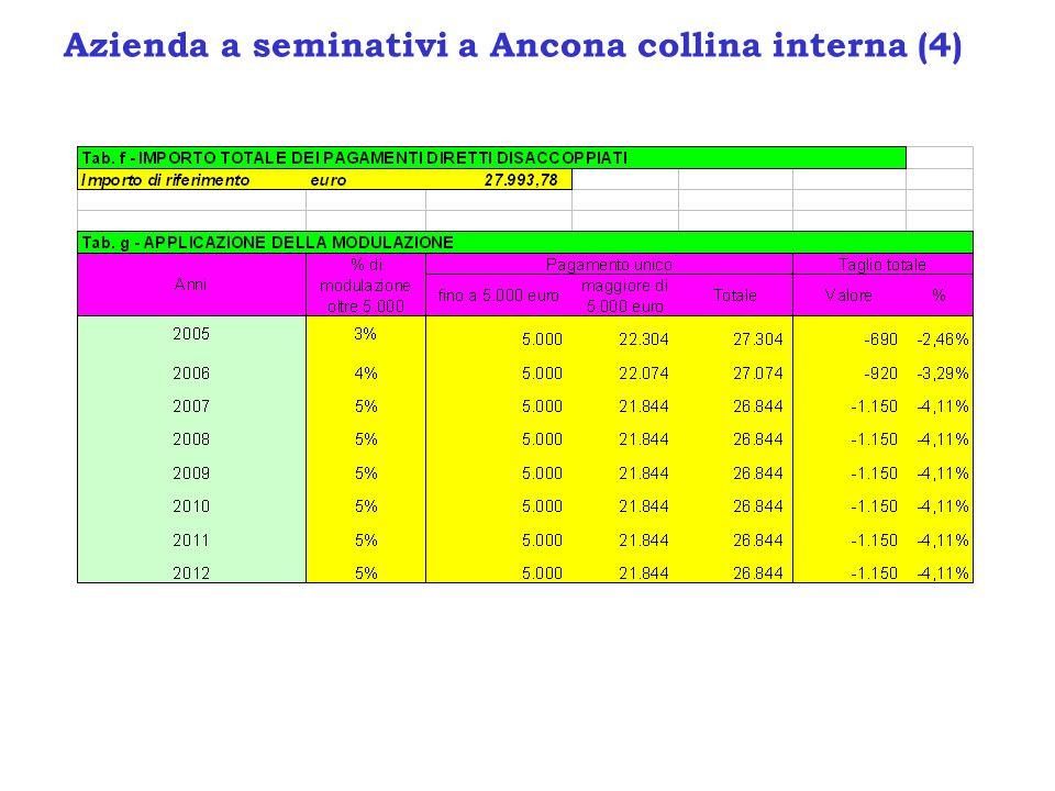 Azienda a seminativi a Ancona collina interna (4)