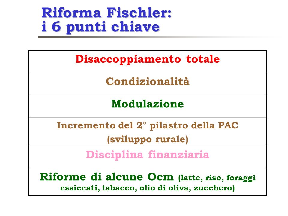 Riforma Fischler: i 6 punti chiave