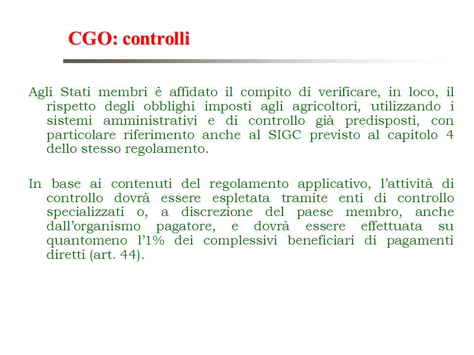 CGO: controlli