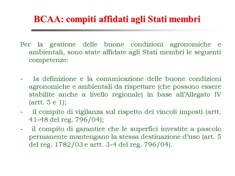 BCAA: compiti affidati agli Stati membri