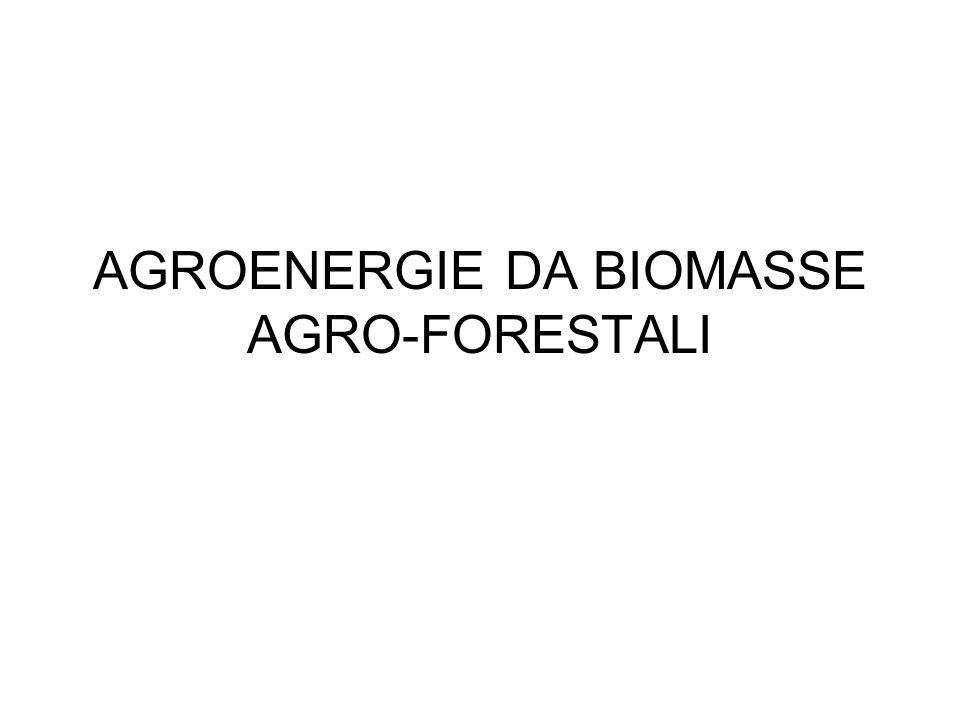 AGROENERGIE DA BIOMASSE AGRO-FORESTALI