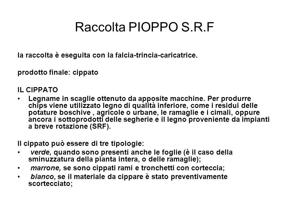 Raccolta PIOPPO S.R.F la raccolta è eseguita con la falcia-trincia-caricatrice. prodotto finale: cippato.