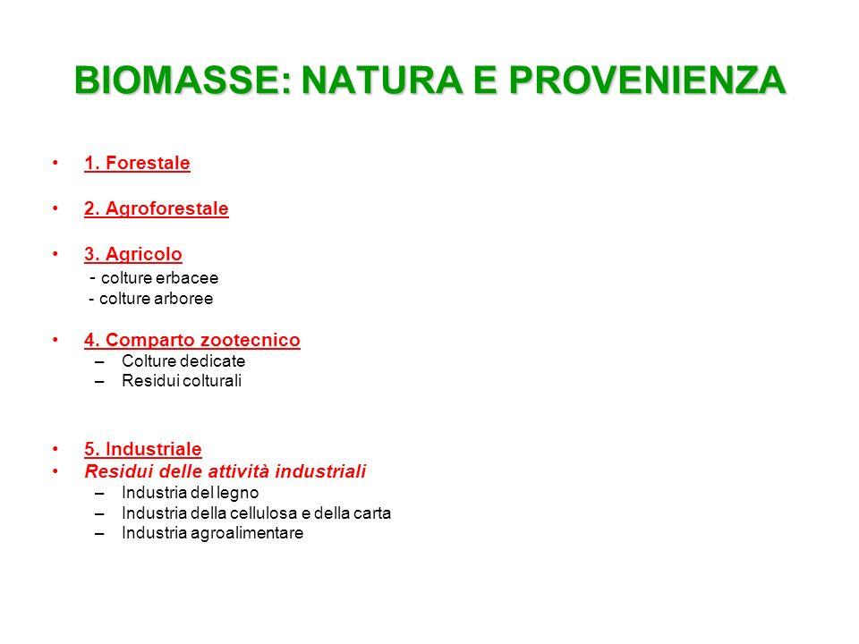 BIOMASSE: NATURA E PROVENIENZA