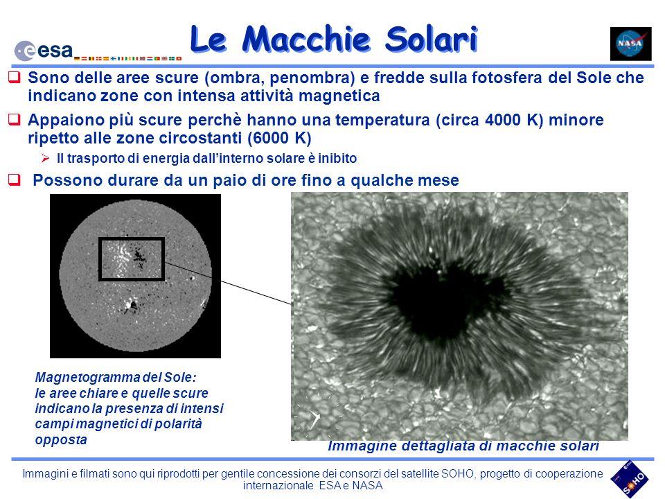 Immagine dettagliata di macchie solari