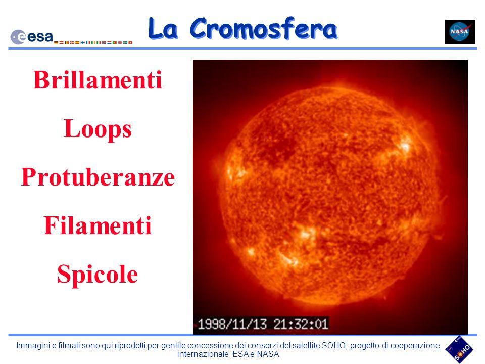 La Cromosfera Brillamenti Loops Protuberanze Filamenti Spicole