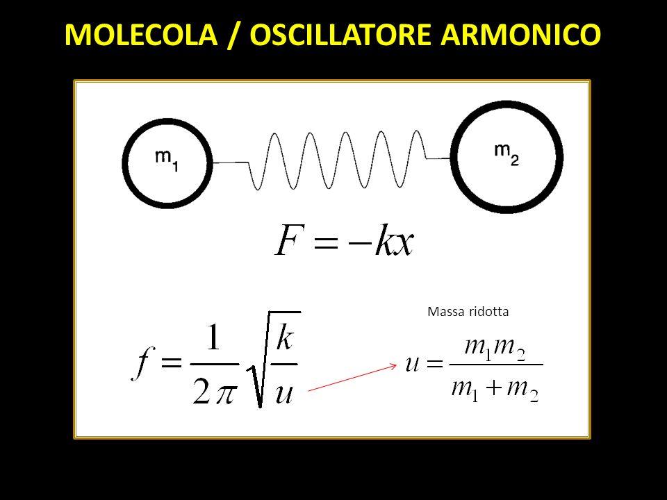 MOLECOLA / OSCILLATORE ARMONICO