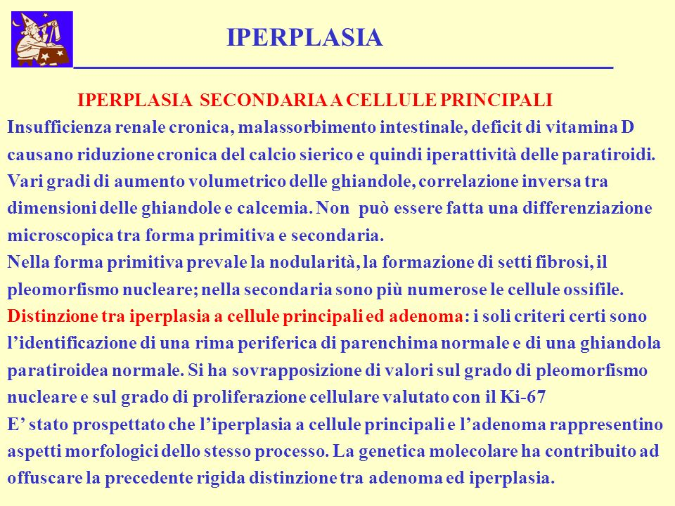 IPERPLASIA IPERPLASIA SECONDARIA A CELLULE PRINCIPALI