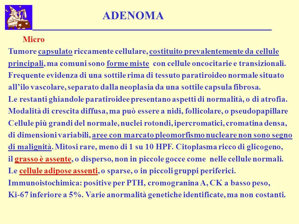 ADENOMA Micro. Tumore capsulato riccamente cellulare, costituito prevalentemente da cellule.