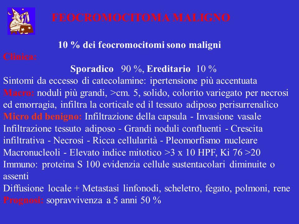 FEOCROMOCITOMA MALIGNO