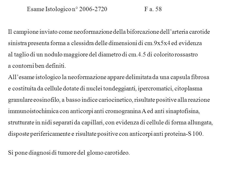 Esame Istologico n°10593.05 Paziente R. A. M a.32