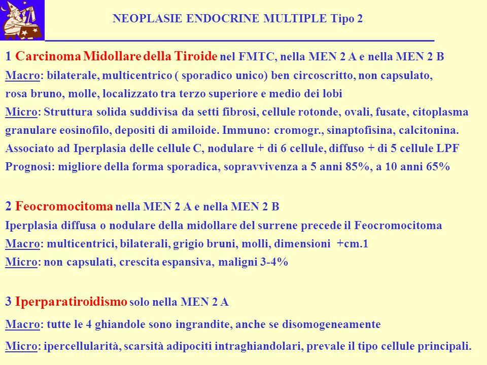 2 Feocromocitoma nella MEN 2 A e nella MEN 2 B