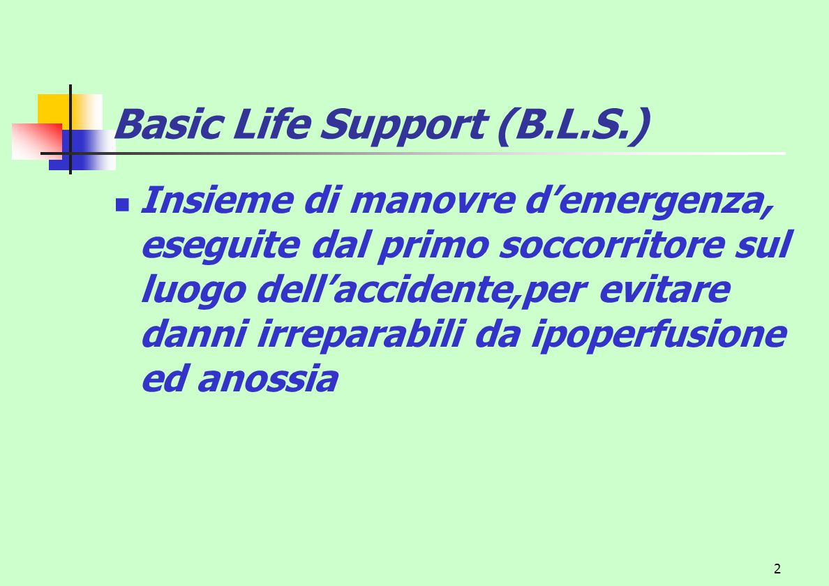 Basic Life Support (B.L.S.)