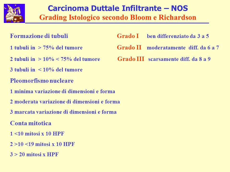 Carcinoma Duttale Infiltrante – NOS