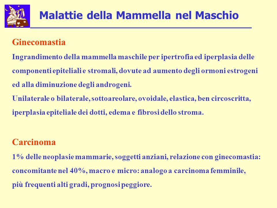 Malattie della Mammella nel Maschio