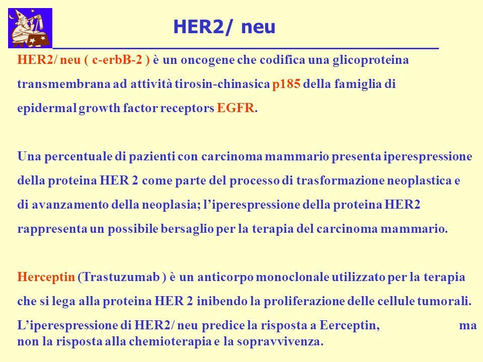 HER2/ neu HER2/ neu ( c-erbB-2 ) è un oncogene che codifica una glicoproteina. transmembrana ad attività tirosin-chinasica p185 della famiglia di.