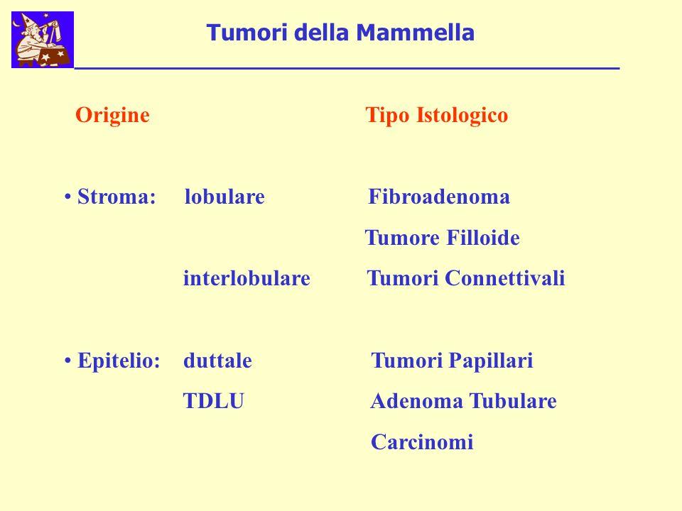 Tumori della Mammella Origine Tipo Istologico. Stroma: lobulare Fibroadenoma.