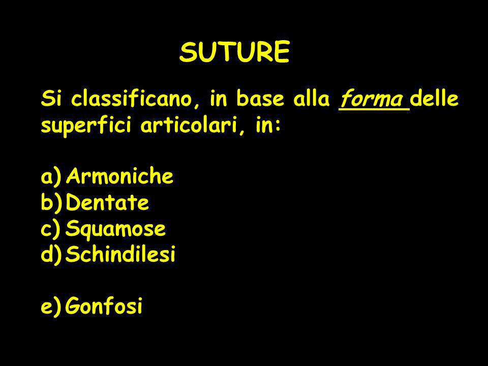SUTURE Si classificano, in base alla forma delle