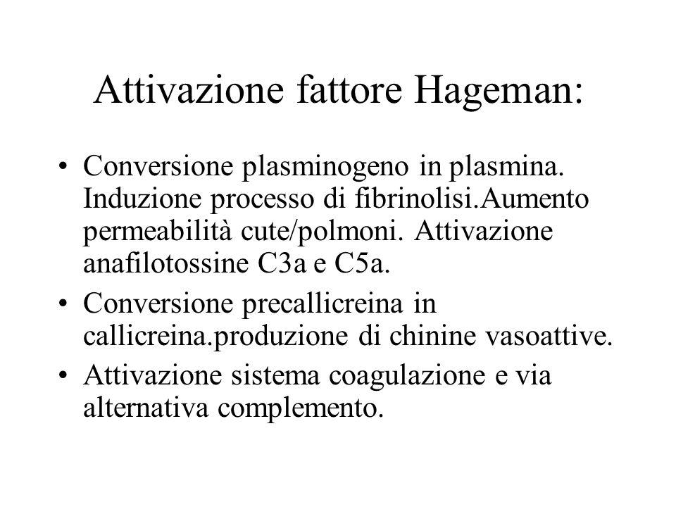 Attivazione fattore Hageman: