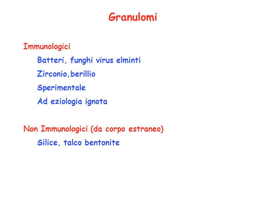 Granulomi Immunologici Batteri, funghi virus elminti Zirconio,berillio
